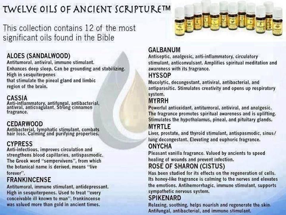 Oils of Scripture