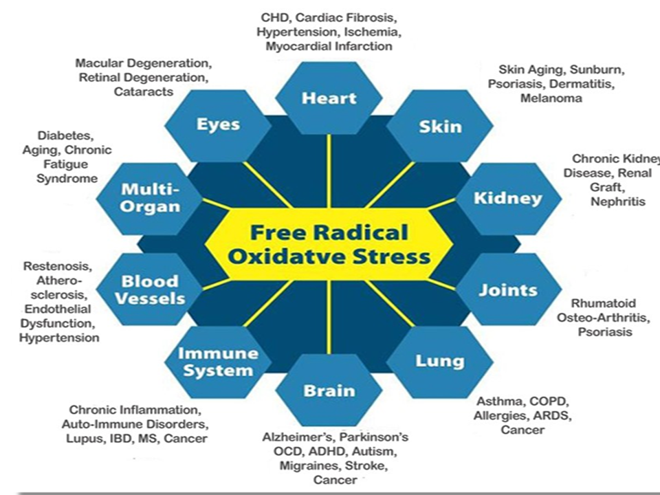 Disease from Oxidative Stress