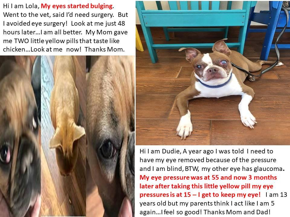 Bulging eyes and Glaucoma